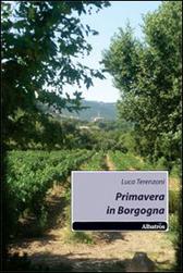"""Recensione Libro """"Primavera in Borgogna"""""""