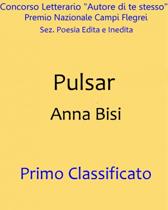 """Pulsar"" di Anna Bisi"