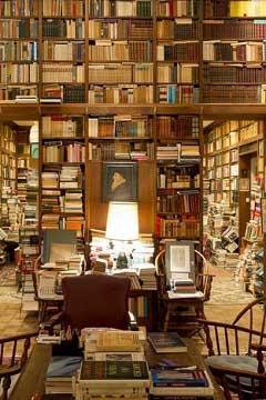Quali sono i libri gialli più belli del 2015? I thriller migliori