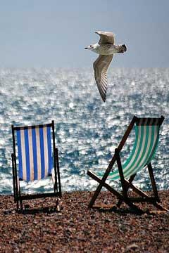 Quali sono i libri da leggere in vacanza?  – Estate 2015