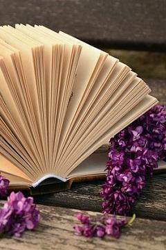 Saldi sui libri: sconti e offerte delle case editrici italiane