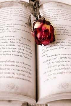 Quali sono i libri più belli da leggere secondo Alessandra Galdiero?