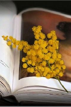 Quale libro regalare alla Festa delle donne?