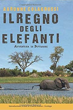 Il regno degli elefanti